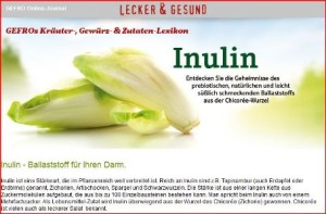 Gefro_Inulin